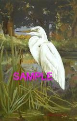Egret by William Acarl Bell
